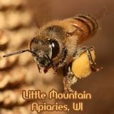 little mountain apiaries small
