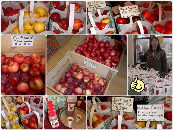 Busse-orchard-apples